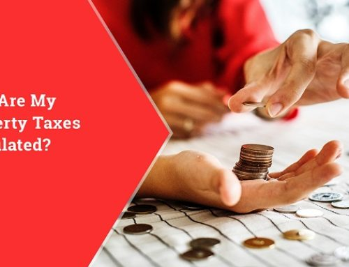 How Are My Property Taxes Calculated?