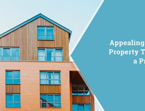 Appealing Your Property Taxes, a Primer