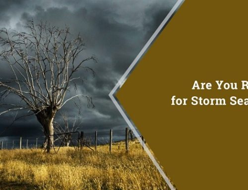 Are You Ready for Storm Season?