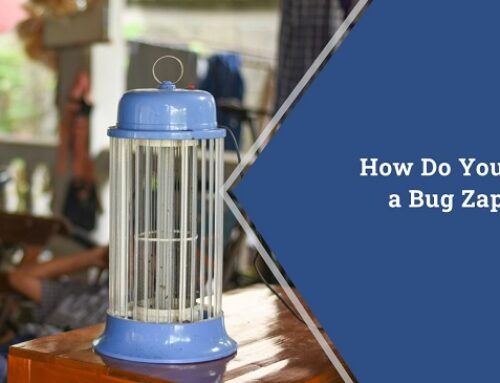 How Do You Use a Bug Zapper?